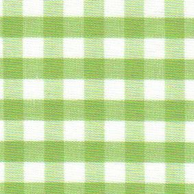 1/4' Gingham - Sprout